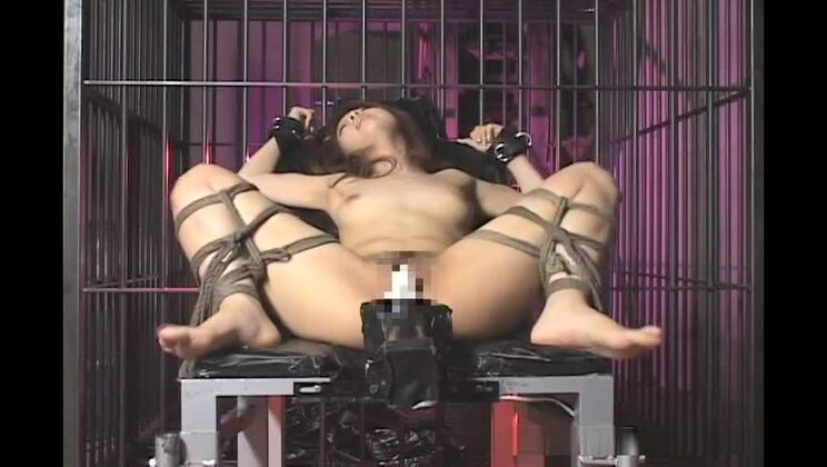 Nice oriental bitch getting fucked by a machine
